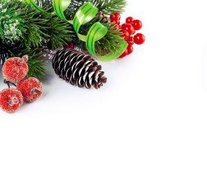Lee más sobre el artículo Navidades 2020-2021